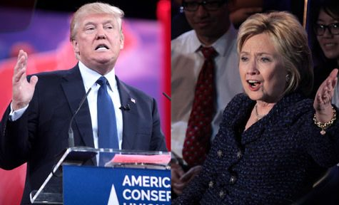 An American Parliament? A Possible Solution To Bad Candidates