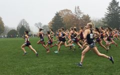 Chelsea Gale (farthest to the left) pulls ahead at the start of the girls class 2A state cross country race November 4 in Peoria, Illinois.
