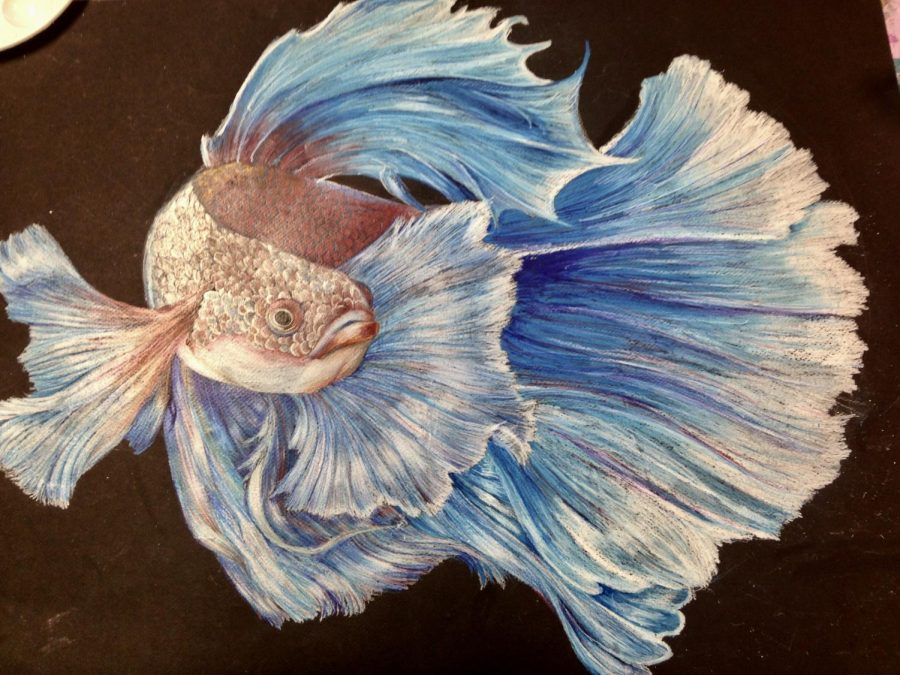 Kaitlin Martin's colored pencil drawing of a betta fish won the Dole Art show on January 26, 2018.