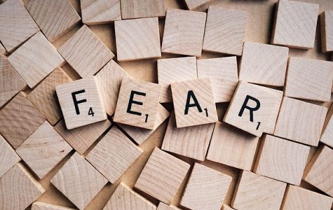 The Prairie Ridge seniors ('19) spelled out their fears in an online survey in April.