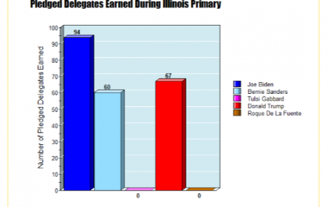 Results from the Illinois Primary