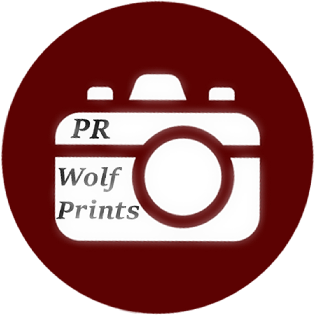 student news & media | Prairie Ridge High School, Crystal Lake, IL